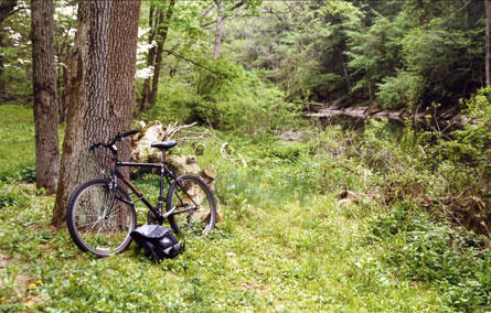 Mountain Bike, Stream Parking
